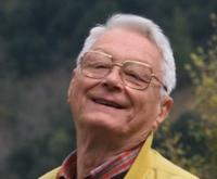 Victor V.POP